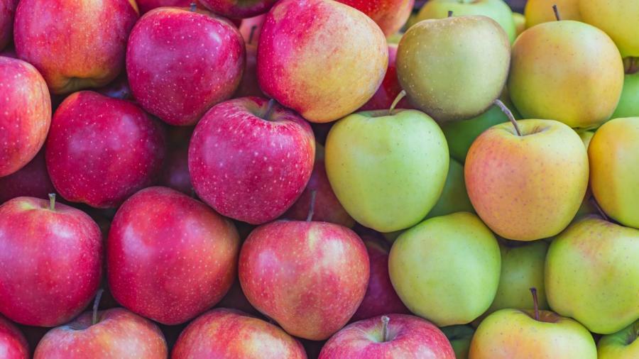 Biến đổi khí hậu gây tai hại cho táo đỏ như thếnào